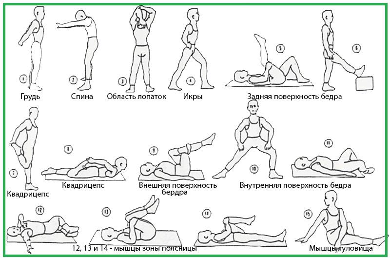 Стретчинг для начинающих лучшие упражнения