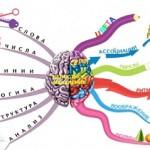 Кинезиология в школьном обучении